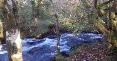 Sligo Scenic Drives with Walks