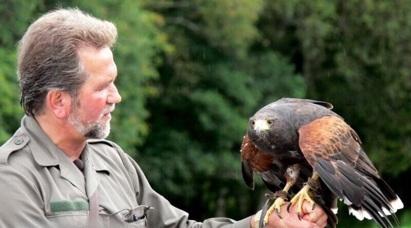 Eagles Flying Reopens