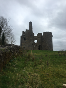 Ruins of Ballinafad Castle